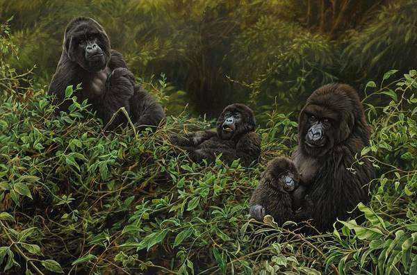 Painting - Family Of Gorillas by Alan M Hunt
