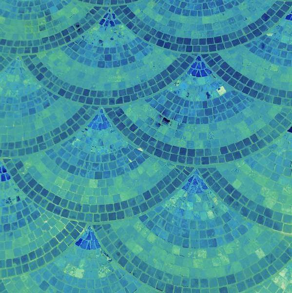 Photograph - Fan Mosaic - 2 by Karen J Shine