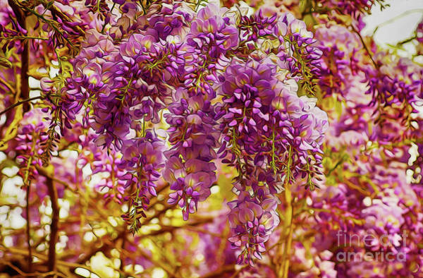 Digital Art - Fanciful Flowers 3 by Kim Pate