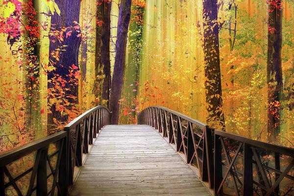 Footbridge Photograph - Fanciful Footbridge by Jessica Jenney