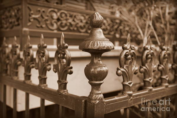 Photograph - Fancy Fence In New Orleans by Carol Groenen