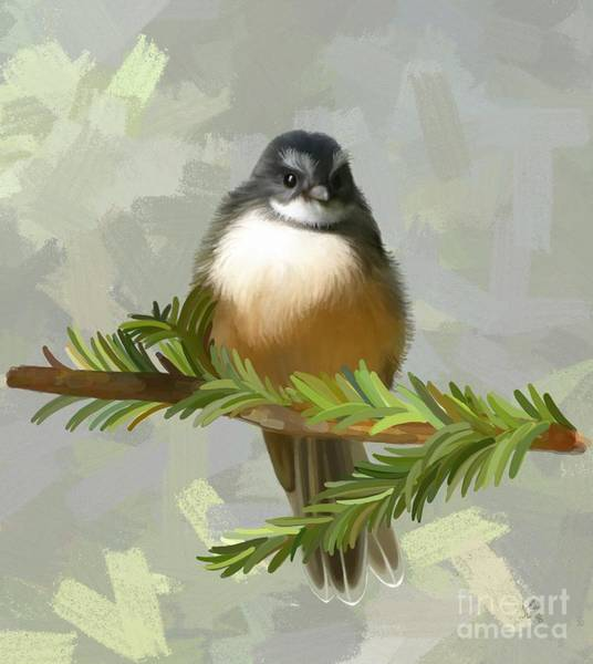 Painting - Fantail  by Ivana Westin
