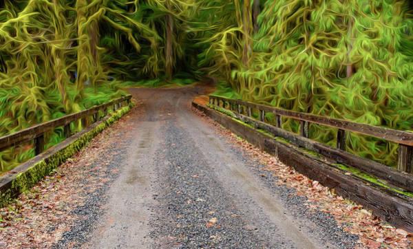 Photograph - Fantasy Bridge by Bill Posner
