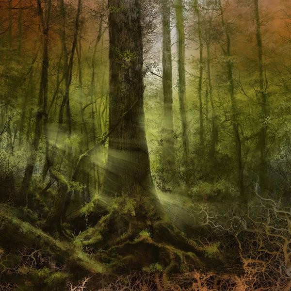 Gold Leaves Digital Art - Fantasy Forest 2 3 by Bekim M
