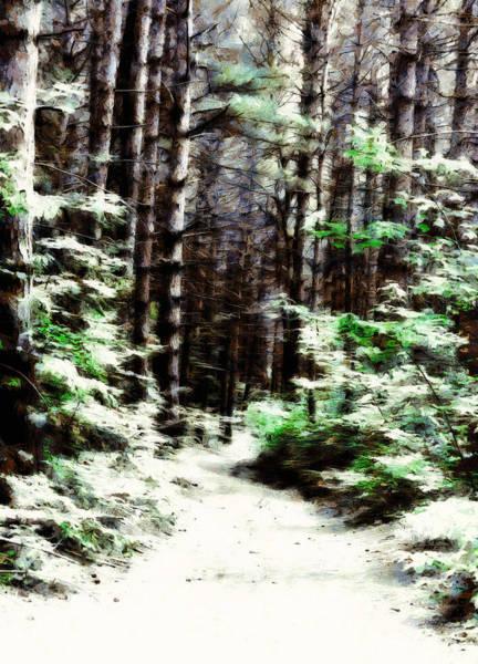 Digital Art - Fantasy Forest by JGracey Stinson