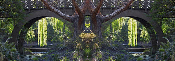 Photograph - Fantasy Garden by Wes and Dotty Weber