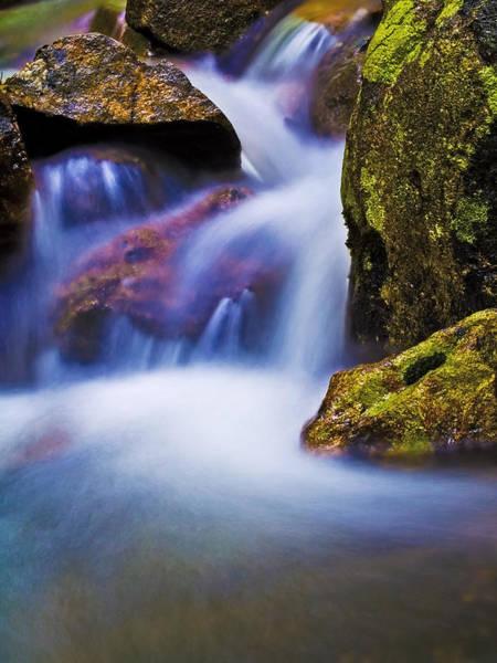Photograph - Fantasy Stream by Jim DeLillo