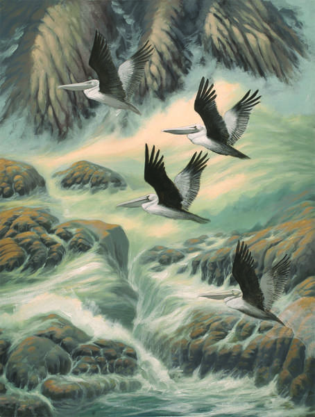 Farallon Islands Painting - Farallon Friends by Marte Thompson