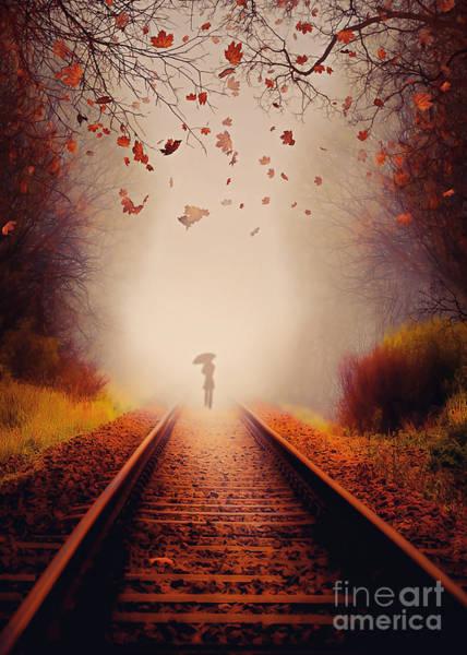 Fall Photograph - Farewell by Svetlana Sewell