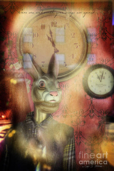 Photograph - Fargo Rabbit by Craig J Satterlee