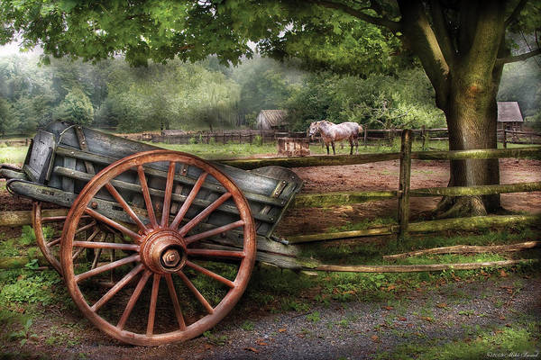 Wall Art - Photograph - Farm - Horse - Grey Mare by Mike Savad