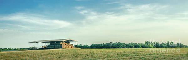 Photograph - Farm 2 by Andrea Anderegg