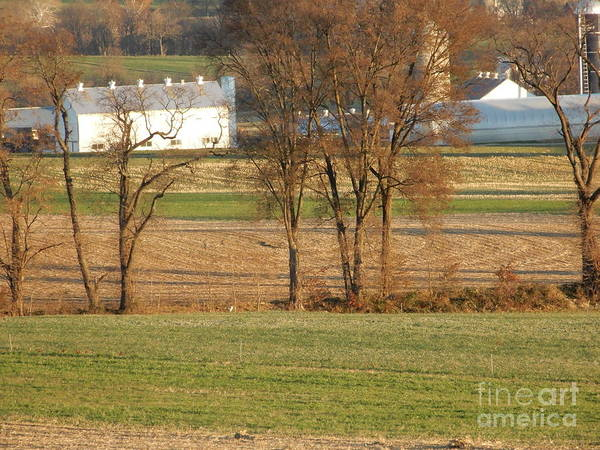 Photograph - Farm At Harvest by Christine Clark