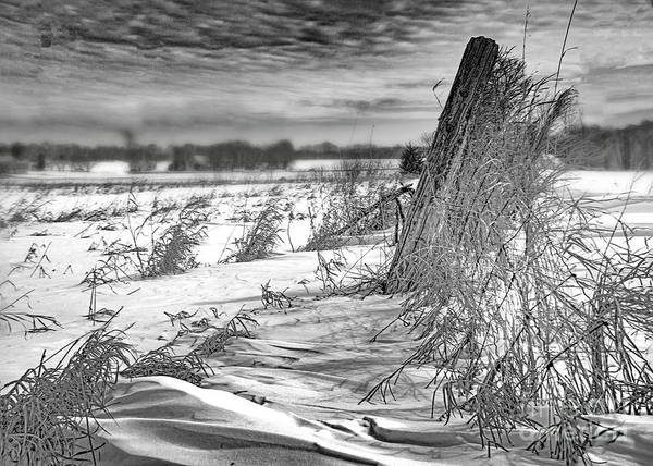 Photograph - Farm Fence In Winter by Hal Halli