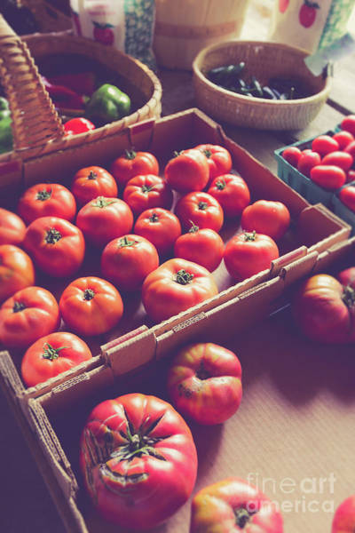 Photograph - Farm Fresh Tomatoes At A Farm Stand by Edward Fielding