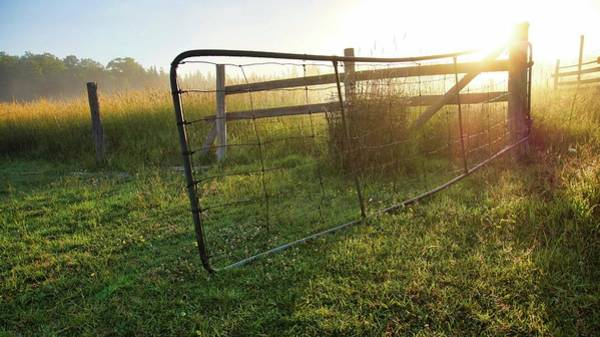 Photograph - Farm Gate by Bryan Smith