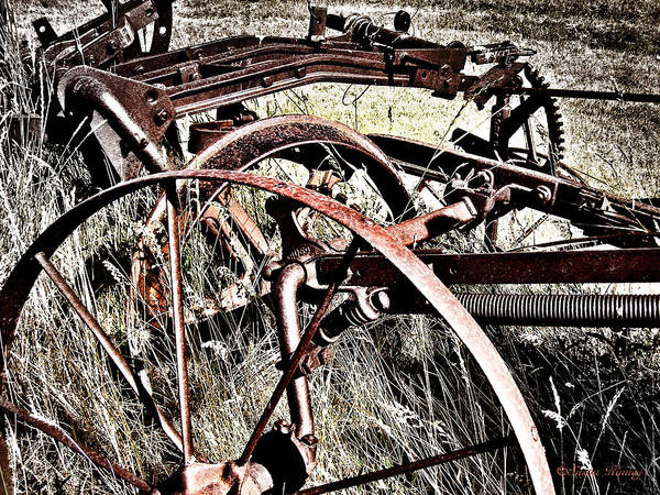 Photograph - Farm History 1 by Susan Kinney