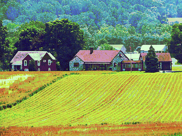Photograph - Farm Homestead by Susan Savad