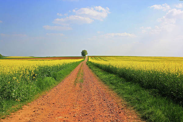 Photograph - Farm House Road by Movie Poster Prints