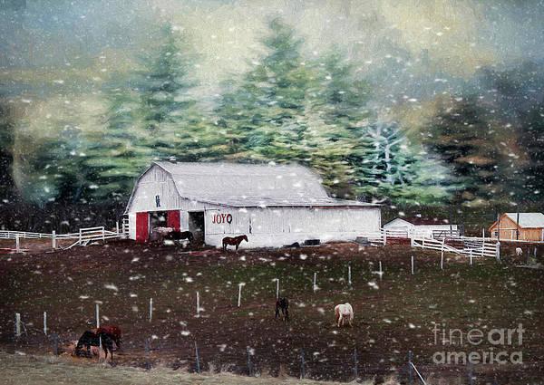 Wall Art - Photograph - Farm Life by Darren Fisher