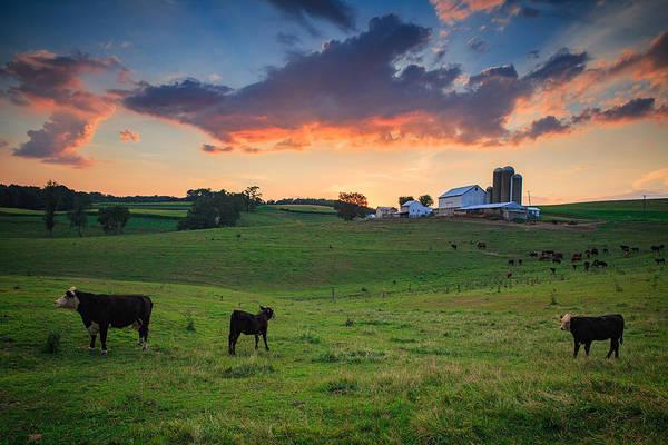 Milk Farm Photograph - Farm Life In Beaver County by Emmanuel Panagiotakis