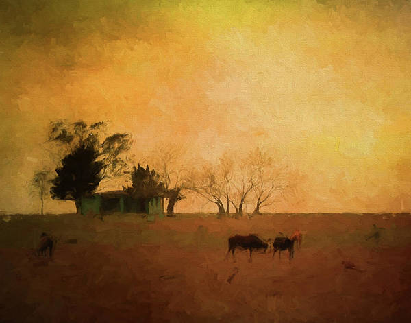 Photograph - Farm Life by Pete Rems