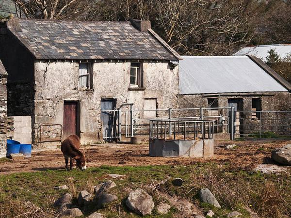Smallholding Photograph - Farm On The Beara Peninsula by John Perriment