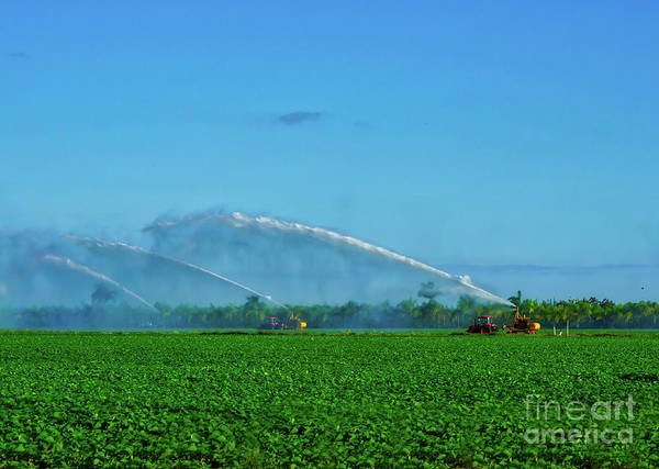 Wall Art - Photograph - Farm Sprinklers And Blue Skies by DAC Photo
