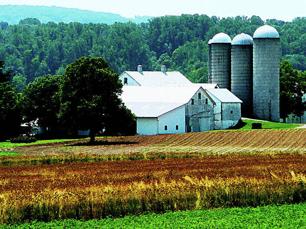 Photograph - Farm With White Silos by Susan Savad