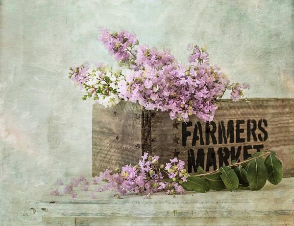 Photograph - Farmers Market by Kim Hojnacki