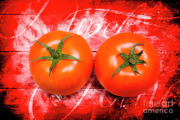 Green Vegetable Photograph - Farmers Market Tomatoes by Jorgo Photography - Wall Art Gallery