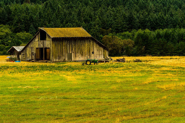 Photograph - Farming On San Juan Island by TL  Mair