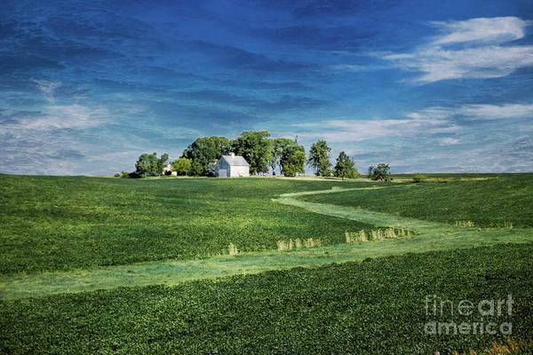 Amana Wall Art - Photograph - Farmland by Lynn Sprowl