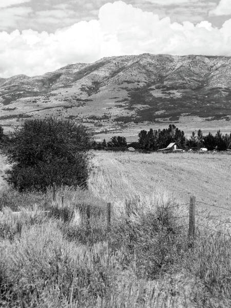 Photograph - Farm's Edge Bw by David King