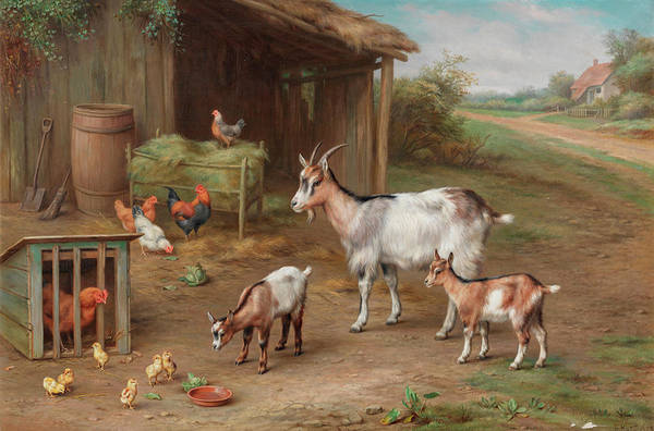 Breeding Painting - Farmyard Gathering by Edgar Hunt