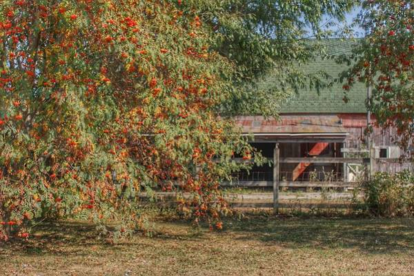 Photograph - 6007 - Farrand Road Red Corral By Flowering Tree by Sheryl Sutter