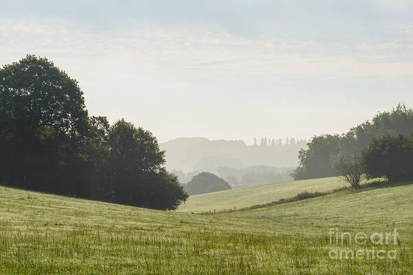 Wall Art - Photograph - Farringdon View South Downs  by Richard Thomas