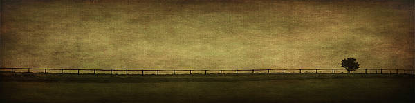 Fences Wall Art - Photograph - Farscape by Evelina Kremsdorf