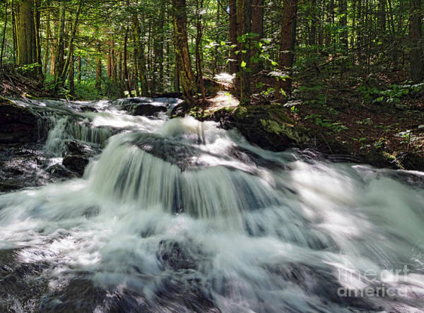 Photograph - Fast River In The Forest, Sumner, Maine #00166 by John Bald
