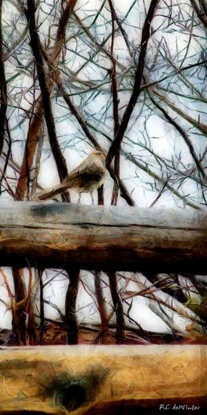 Painting - Fat Sparrow Fat Fence by RC DeWinter