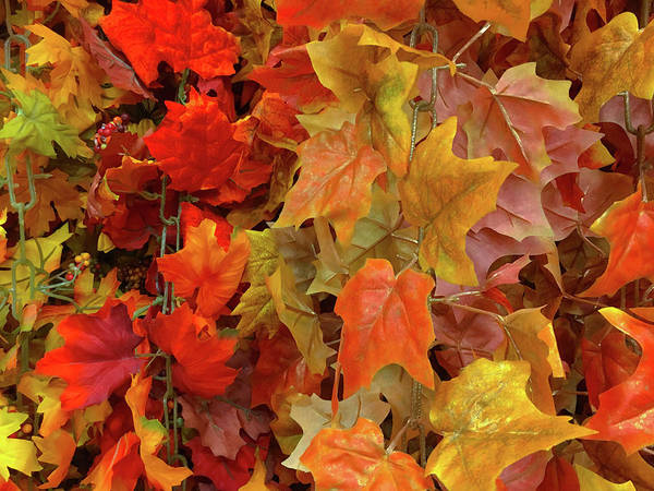 Photograph - Faux Autumn Leaves by SR Green