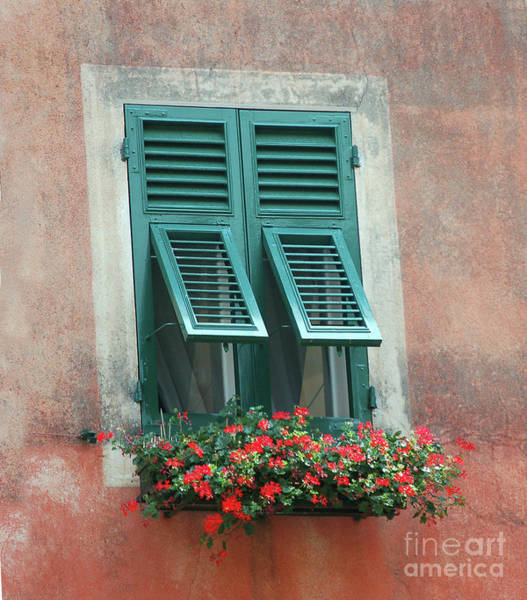 Photograph - Faux  Painting Window  by Frank Stallone