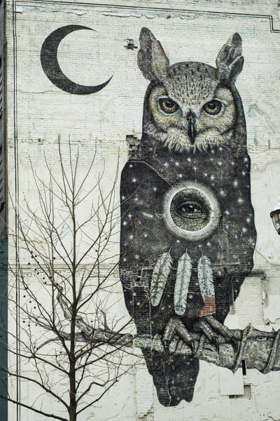 Photograph - Fayetteville Mural Perched Owl - Crescent Moon by Gregory Ballos
