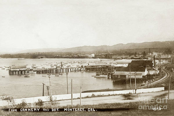 Photograph - F.  E. Booth Cannery And Fishermans Wharf Looking East From The Lower Presidio by California Views Archives Mr Pat Hathaway Archives