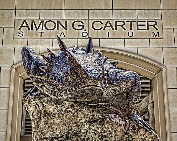 Wall Art - Photograph - Fear The Frog - Tcu 2 by Stephen Stookey