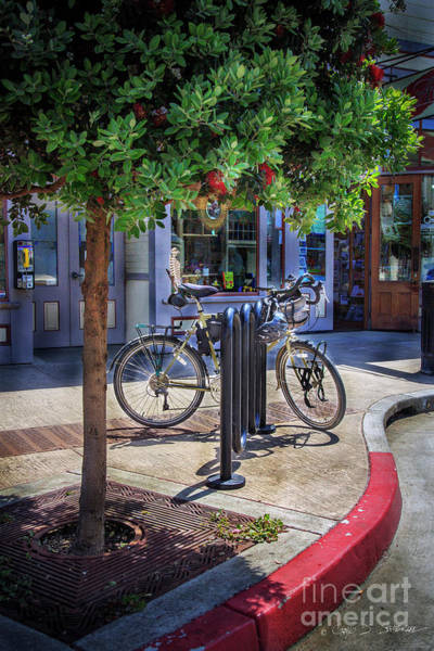 Photograph - Feather Bicycle by Craig J Satterlee