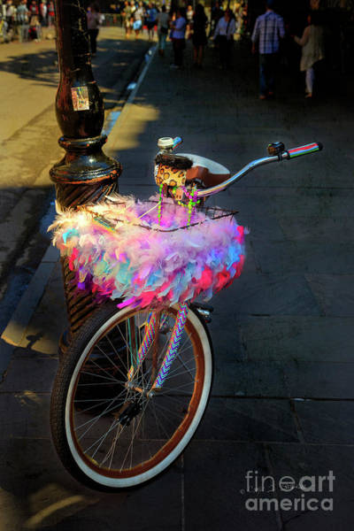 Photograph - Feather Jazz Bicycle by Craig J Satterlee