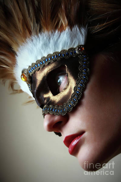 Photograph - Feather Mask II Venetian Mask by Dimitar Hristov