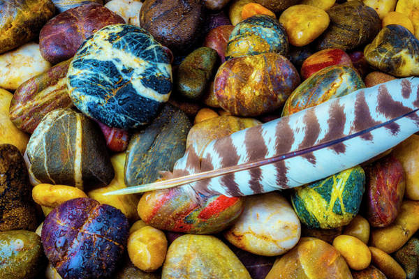 Hard Rock Photograph - Feather On River Stones by Garry Gay