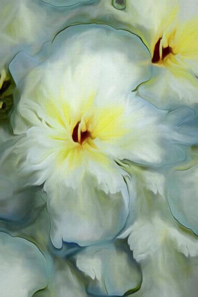 Mixed Media - Feather Petals White 2 by Lynda Lehmann